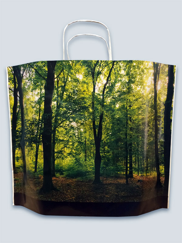 Pine Kraft Paper Bag - full colour print